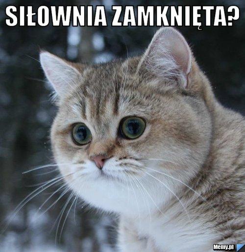 3024180428_silownia_zamknieta.jpg
