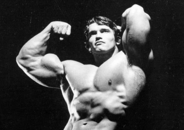 Arnold (12).jpg