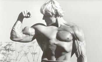 biceps_3.jpg