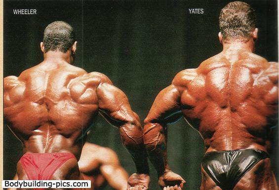 Flex_Wheeler_437.jpg