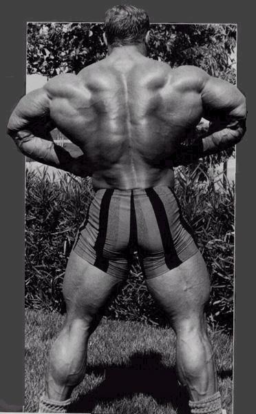 5295d1123249989-ultimate-bodybuilding-gallery-mike-f.jpg