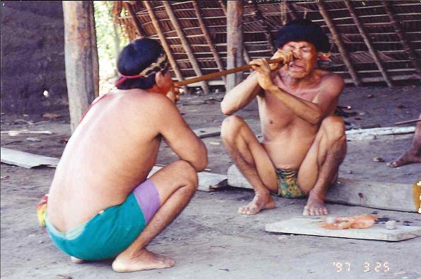 Yanomamo Yopo ceremony.jpg