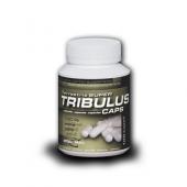 tribulus_caps_100_lar.png