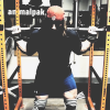 Pull, Squat, Press - Full Body Workout (HLM) - ostatni post przez -Adrian